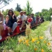 South Coast Railroad Museum Presents the Easter Bunny Express