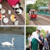The Queen's 90th Birthday Special at Seaton Tramway!