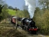 Bring Your Teddy to the East Somerset Railway this Easter!