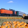 Ride the Pumpkin Patch Train