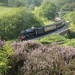 Groups Go Crazy for North Yorkshire Moors Railway