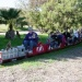 """Candy Cane Train"" Offers Year-End Fun"