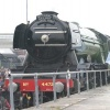 Flying Scotsman Replaced, Won't Pull Olympic Flame