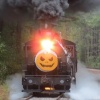 Track or Treat Halloween Express: 20 years of family fun at New Hope Valley Railway