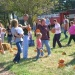 Pumpkin, Halloween, & Fall Harvest Train Excursions