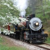 3rd Annual Dogwood Special Brunch Train Set for March 26!